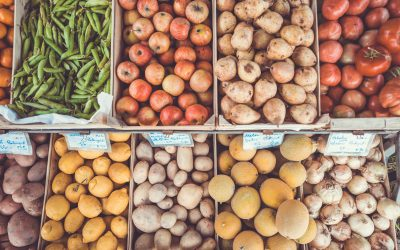 New blog: What will go in the shopping basket – fruit and veg or soft drink?